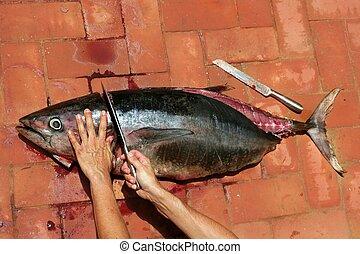 Bloody Mediterranean tuna fish preparation
