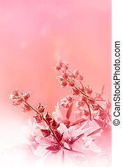 Beautiful pink background with flowers