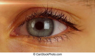 Eye Blinks and Looks Around - Human Eye Blinks and Looks...