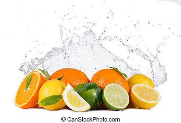 Citruses with water splashes on white - Fresh limes, lemons...
