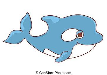 Cute killer whale