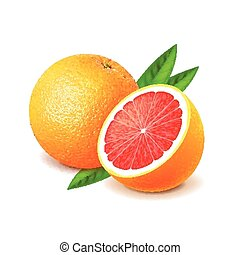 Grapefruit and slice isolated on white vector - Grapefruit...