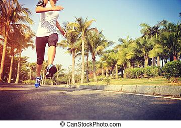 fitness jogger legs running - fitness jogger legs running at...