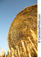 Hay bale   - Hay bale on a harvested field in Germany.