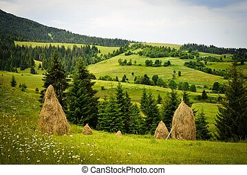 Carpathians mountains, Ukraine