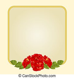 Golden  frame with  hibiscus