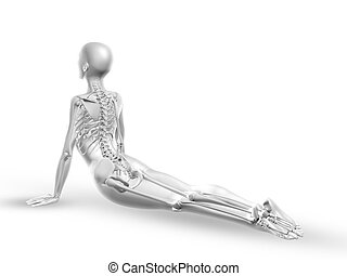 3D female medical figure with skeleton in yoga position