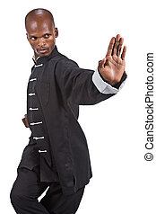 black ninja - african american man in a kung fu black suit