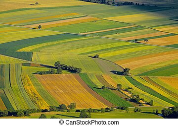 Fields - Aerial view of agricultural fields