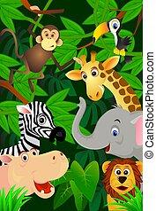 Animals cartoon - Cute wild animal cartoon
