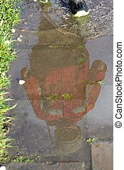 Reflection in puddle - Little boy playing in front of...