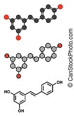 Resveratrol molecule. Present in many plants, including...