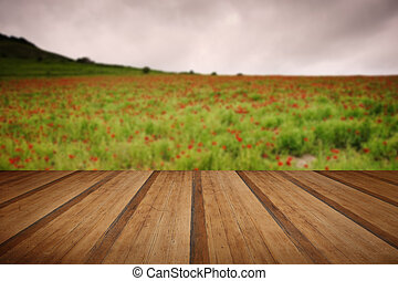 Summer landscape of wild poppies in agricultural field with wood