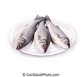 fresh seabass fish on plate. Isolated on a white background.