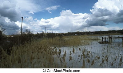 Wastewater with foam - View from coast to contaminated...