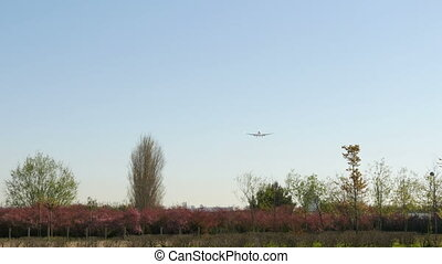 Commercial Airliner Landing - Aircraft landing at Barcelona...