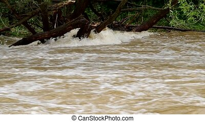 Tempestuous flow of the river after heavy rains
