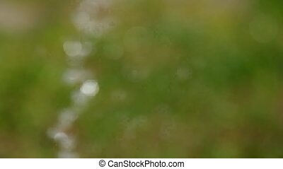 Squirting water drops as a bokeh - Squirting water drops on...
