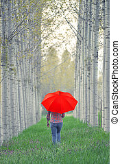 Woman with Red Umbrella Walking Away Through The Tree Alley...