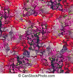 freesia flowers - background of blue, violet and red freesia...