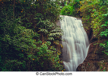 Waterfall on Sri Lanka,Horton Place - Waterfall in deep...