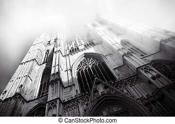 Beautiful Gothic cathedral from Bruxelles Brusels Belgium -...