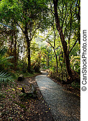 Pathway in a Park Victoria Falls