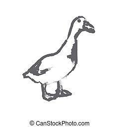duck - brush strokes outline