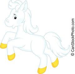 Pony - Little white horse running