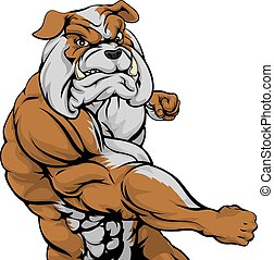 Mean bulldog mascot fighting - A mean looking bulldog sports...