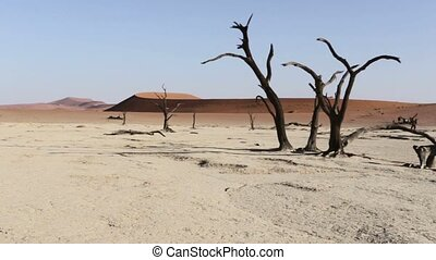 beautiful sunrise landscape of hidden Dead Vlei in Namib...