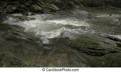 Mountain river Hylaty, Bieszczady.
