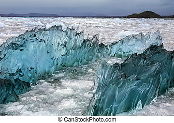 Laguna San Rafael - Patagonia - Chile - Dense, green...