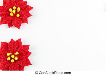 Poinsetta Frame - Two poinsettas on white background frame