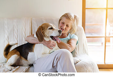 Senior woman and dog - Senior woman with her dog on a couch...