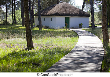 Donana Traditional house - Traditional house of past...
