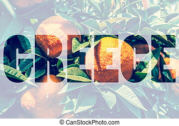 Word GREECE over Fresh ripe oranges on a branch