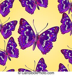 Seamless texture butterfly Apatura iris vector illustration...