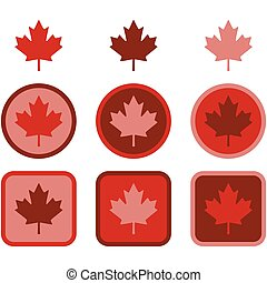 Maple leaf flat design - Icon set showing a maple leaf...