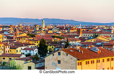 View of the historic center of Pisa in Italy