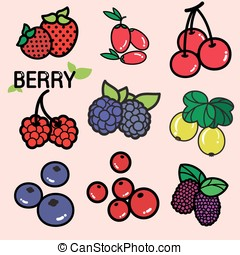 BERRIES - Various kinds of colourful fresh berry, berries in...