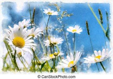 spring daisy flower field vintage - akvarel vintage effect...