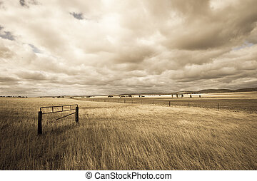 Farm country outback Australia draught - Filtered image of...