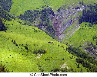 Alpes, madeira, Solitário, casa