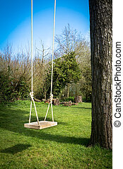 Tree Swing in the garden