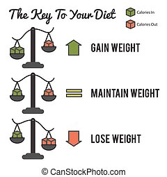 The Key to Your Diet