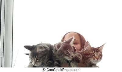 Beautiful smiles brunette girl holding cute kittens