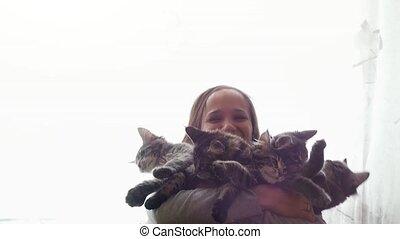 Beautiful smiles brunette girl holding cute kittens -...