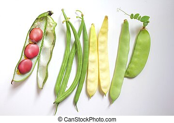 Beans collection - Variety of fresh organic legumes : green...