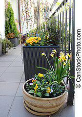 Beautiful modern terrace with mix of spring flowers